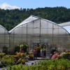Our Green Houses